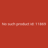The-Rise-Of-Fantasy-(Castellano)