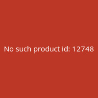 Panzer-Aces-Nº55-(Panzer-Papers)-(English)