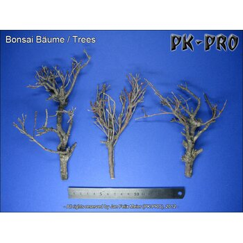 PK-Bonsai-Bäume-(3x)