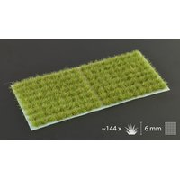 Tufts Dry Green 6mm Small