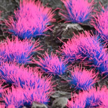 Tufts Alien Neon 4mm Wild