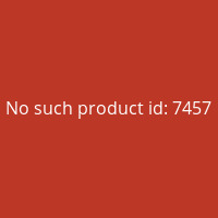 The-Rise-Of-Fantasy-(English)