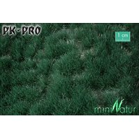 MN-Reed-Grass-Tufts-Summer-(1:87)