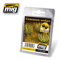 A.MIG-8456-Common-Sedge